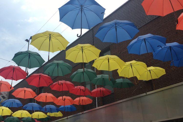 【幸せをもたらす雨】